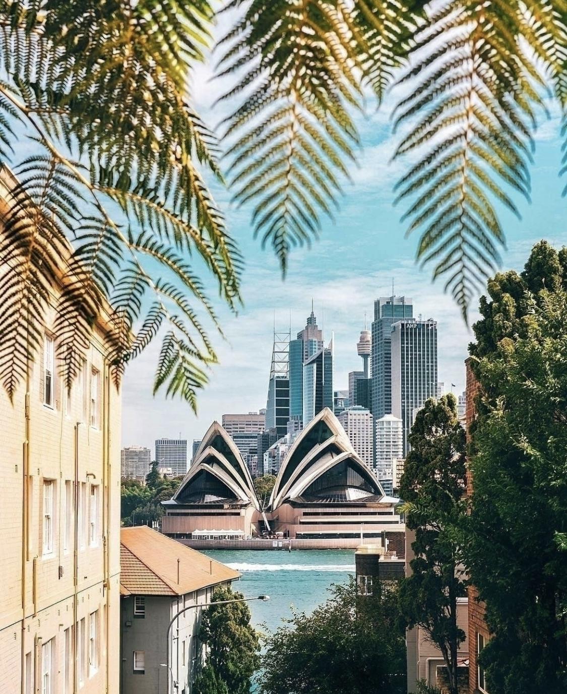 Sydney Long & Co